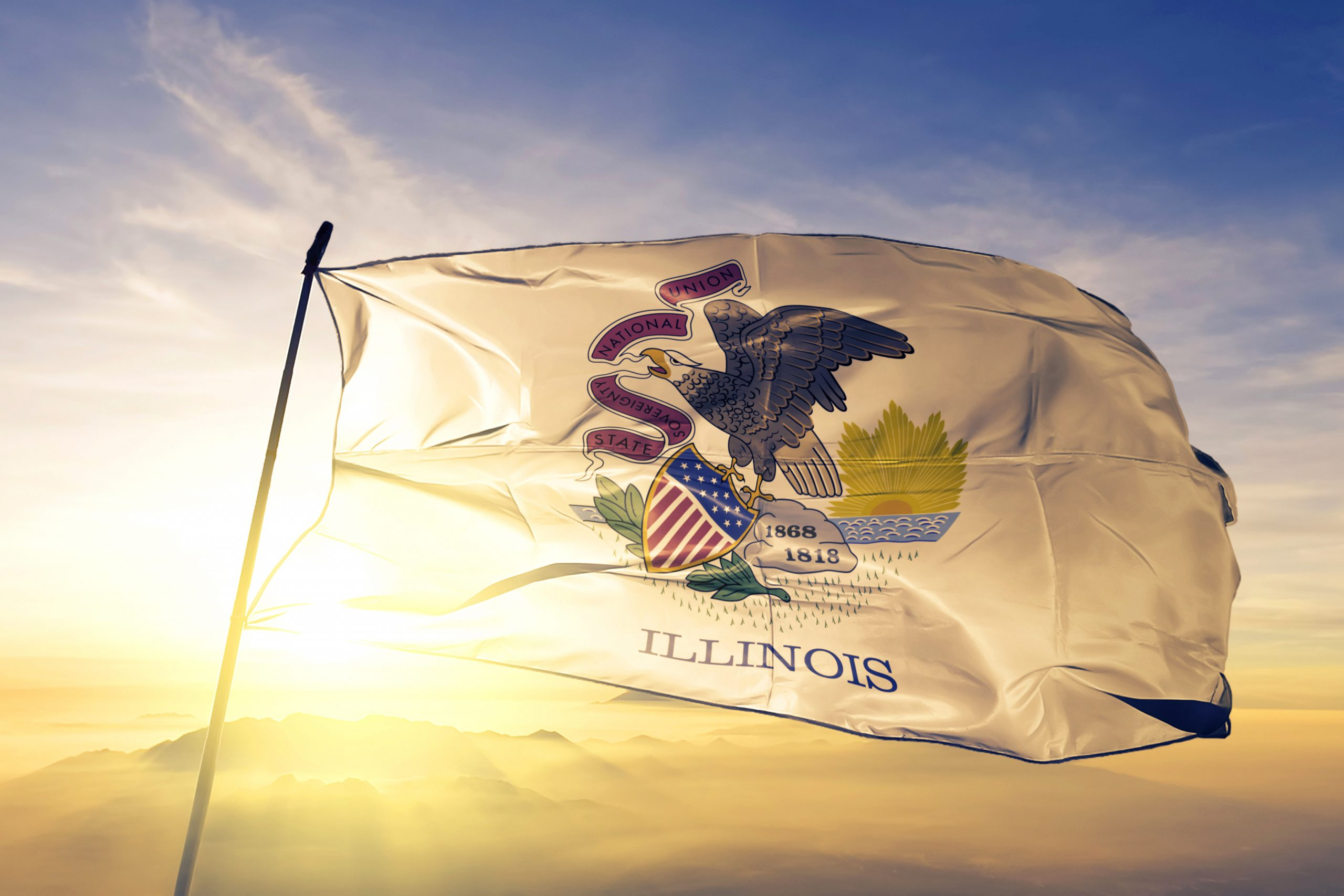 Surrogacy in Illinois: All Intended Parents Need to Know