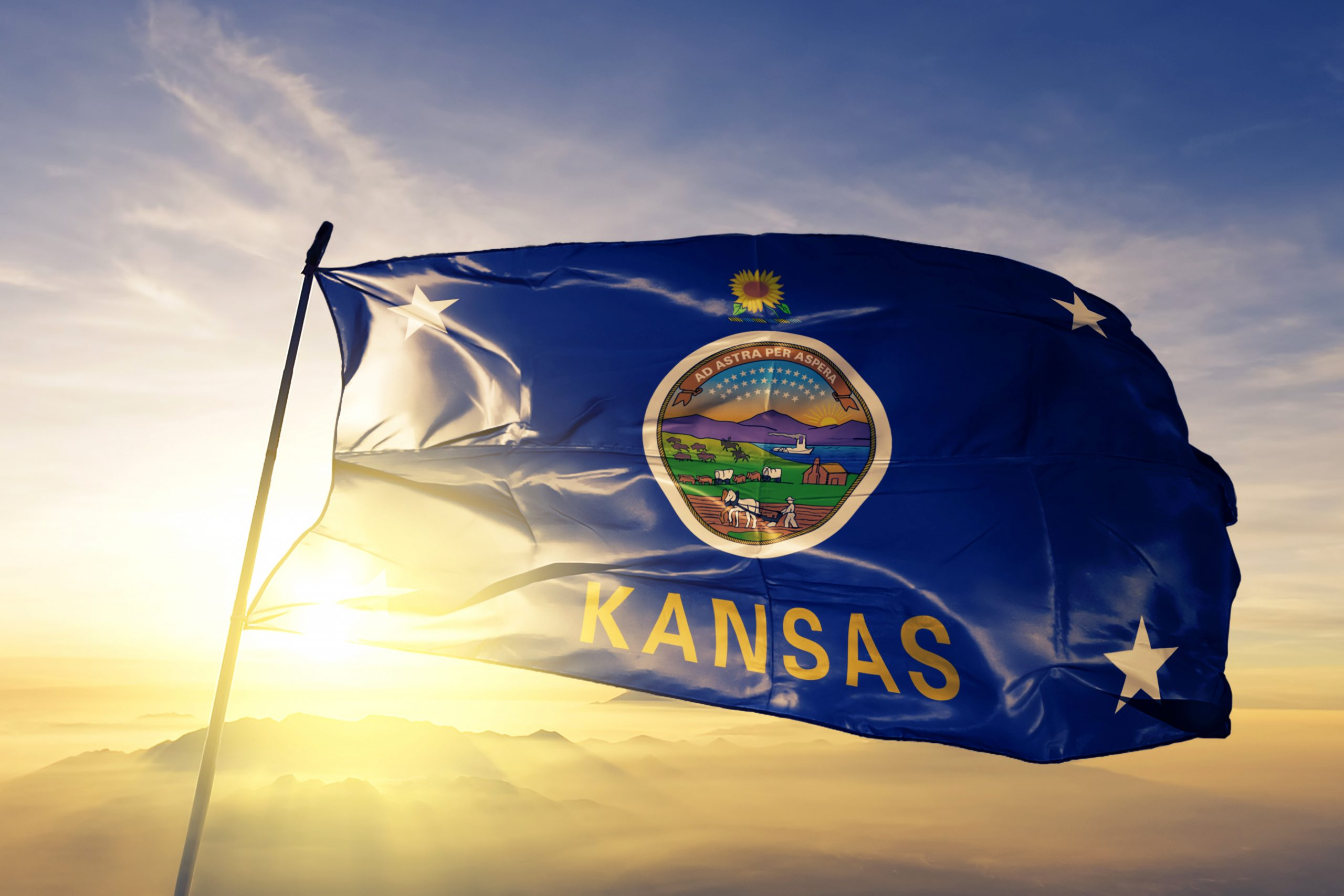 Surrogacy in Kansas: Essentials You Need to Know